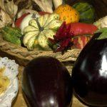 prodotti tipici genuini agriturismo in provincia di padova