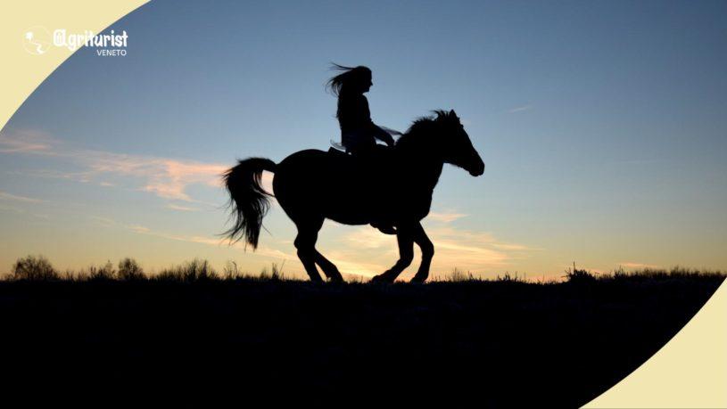 veneto a cavallo